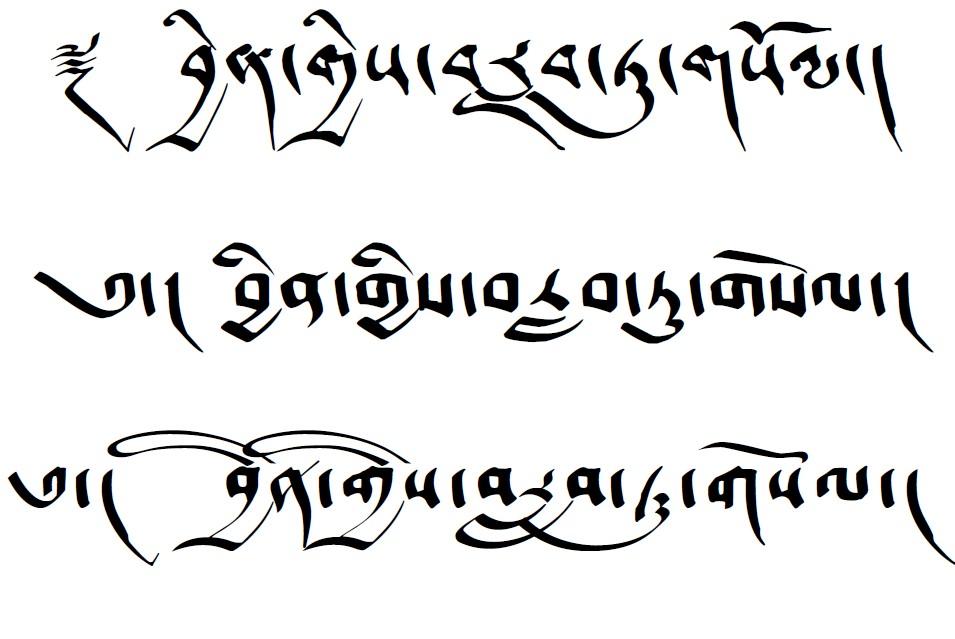 náčrt písma předloktí